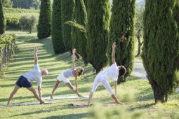 Yoga among the vines